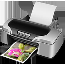 Printers / Scanners (3)